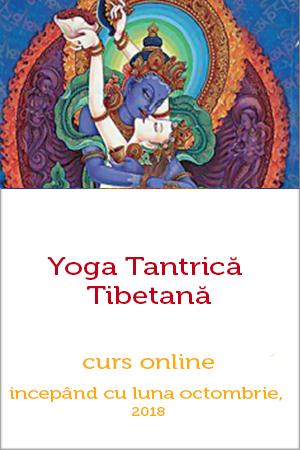 yoga-si-taoismul-frumusetii